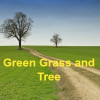 Green Grass aur Tree Hindi Short Story