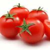 Healthy Tomato स्वास्थ्यवर्धक टमाटर