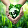 Save Environment Save Earth Hindi Article पर्यावरण रक्षा