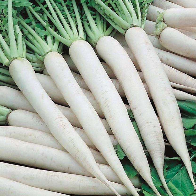 Radish Benefits In Hindi